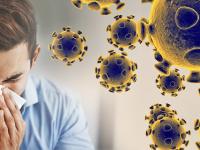 Коронавирусът и как психиката отвръща на удара
